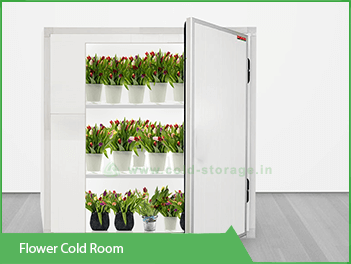 Cold-Room-for-Storage-of-Flowers